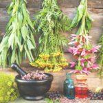 Grafika przedstawiająca kwiaty i owoce