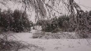 Zdjęcie przedstawia park zasypany śniegiem.