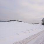 Zdjęcie przedstawia drogę biegnącą poprzez pole zasypane śniegiem.
